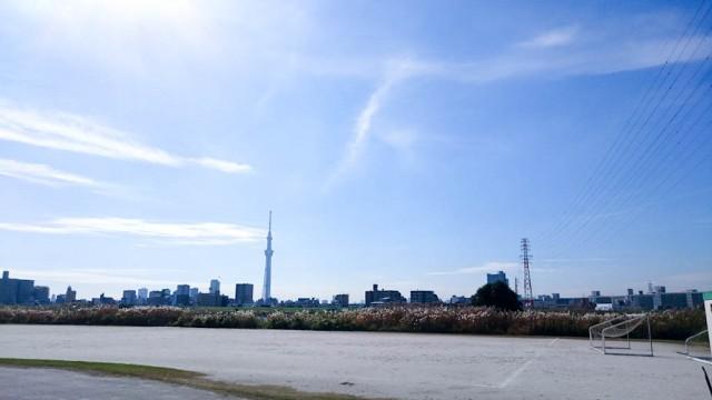 荒川のサイクリングロード 東京スカイツリー