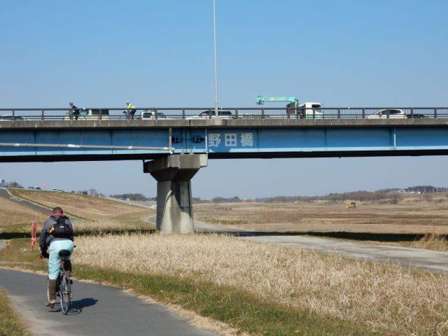 江戸川サイクリングロード 野田橋