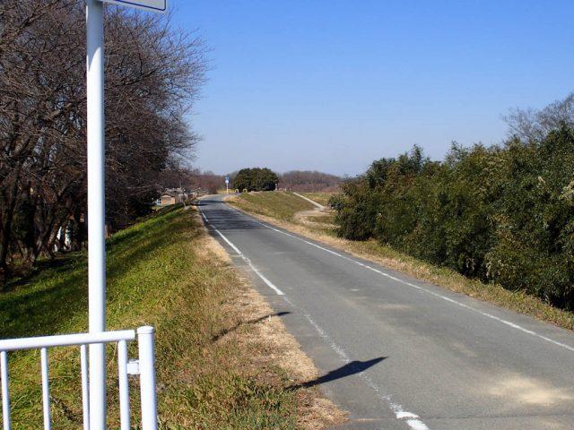 さいたま武蔵丘陵 森林公園自転車道
