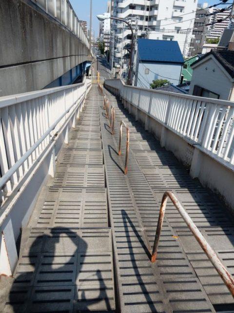 荒サイ 左岸 清砂大橋