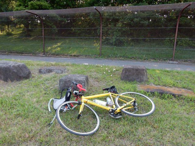 若洲公園のサイクリングロード