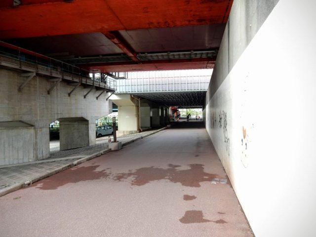 江戸川サイクリングロード 始点?