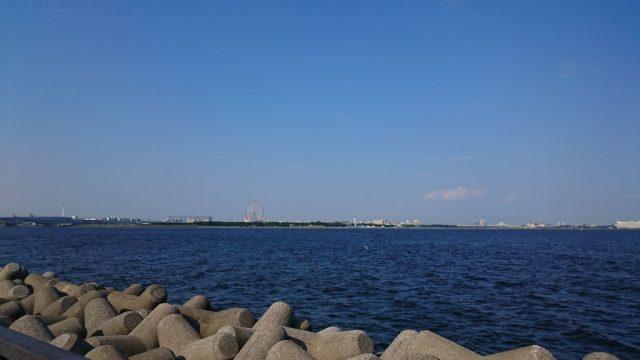 若洲公園から葛西臨海公園