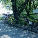 武蔵丘陵森林公園までサイクリングしてきました(その2)