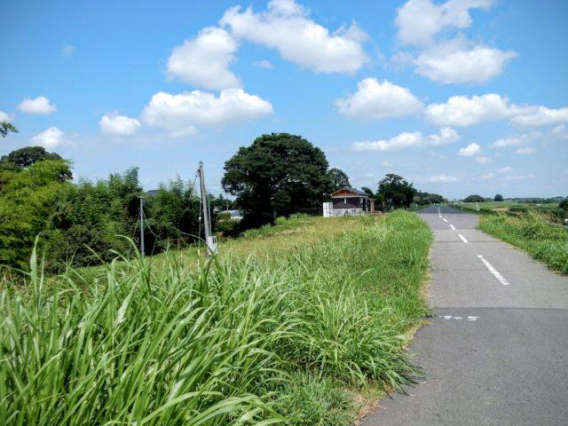 江戸川サイクリングロード 野田 休憩所