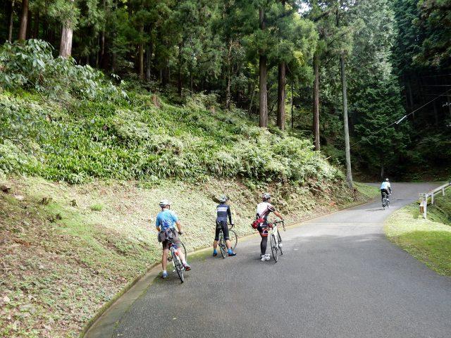 飯能サイクリング 子の権現