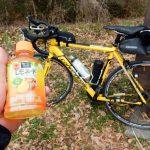 秋ヶ瀬公園までサイクリング