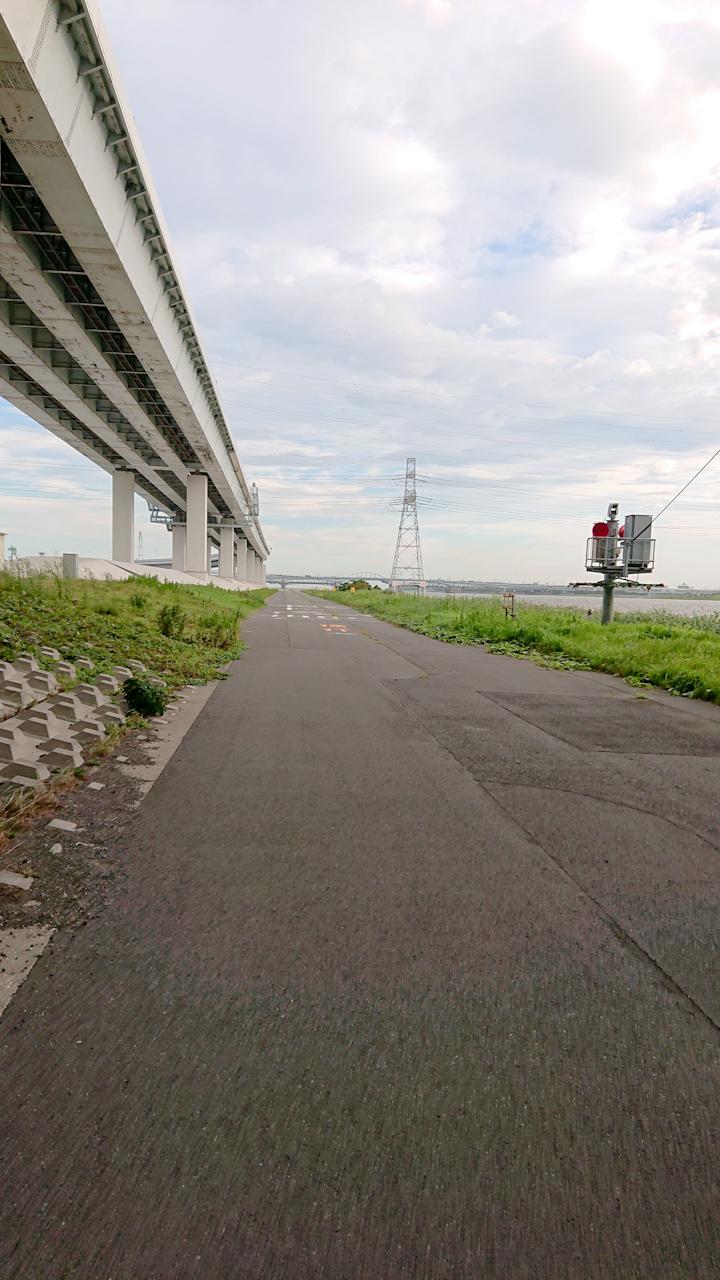 荒川サイクリングロード 左岸 河口