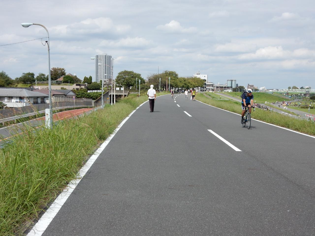 江戸川サイクリングロード 右岸 柴又