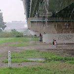 葛西臨海公園まで行ってきました。パンク+土砂降り
