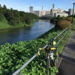 銀座までサイクリング+パレスサイクリング