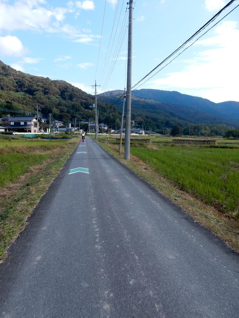 筑波山 ヒルクライム 不動峠