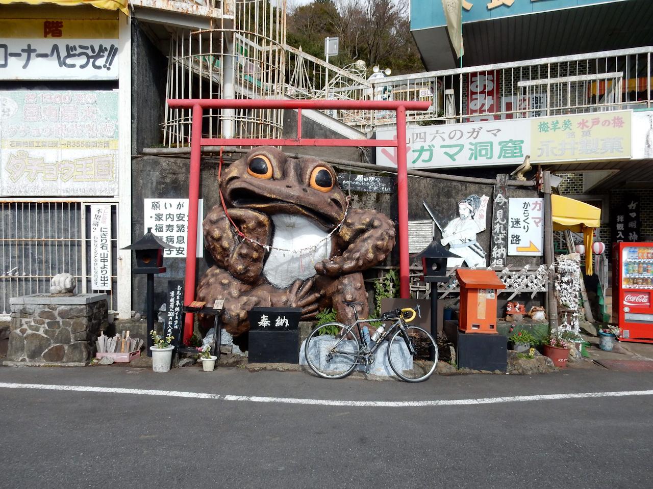 筑波山 ヒルクライム つつじヶ丘 ガマガエル
