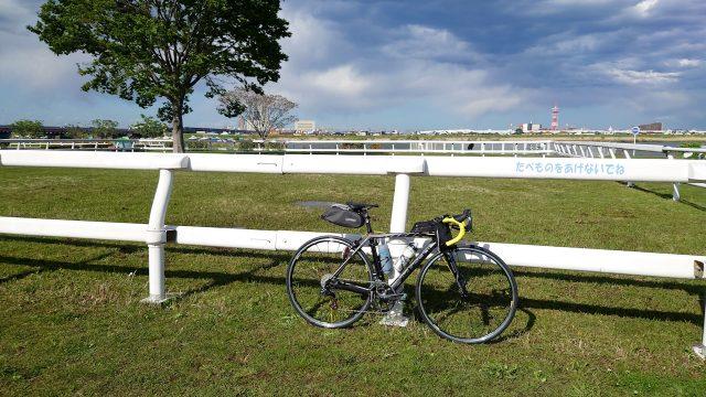 帰れま61000とサイコン振り切りライド 江戸川サイクリングロード ポニーランド