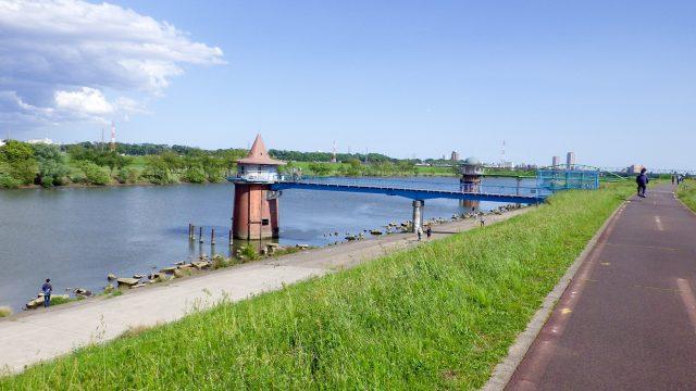 帰れま61000とサイコン振り切りライド 江戸川サイクリングロード 金町浄水場 取水塔